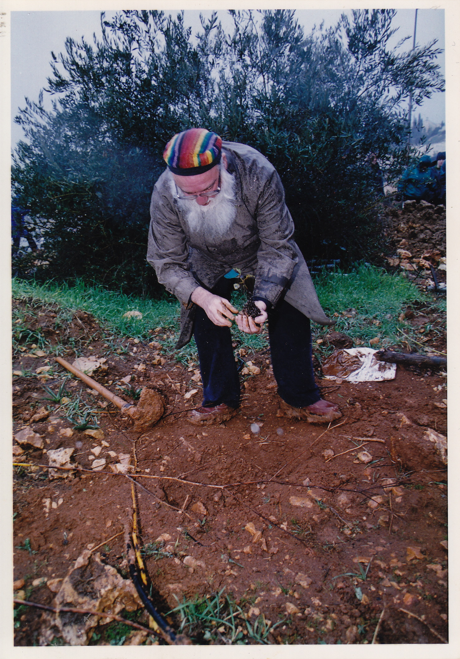Tree Planting with Arthur Waskow