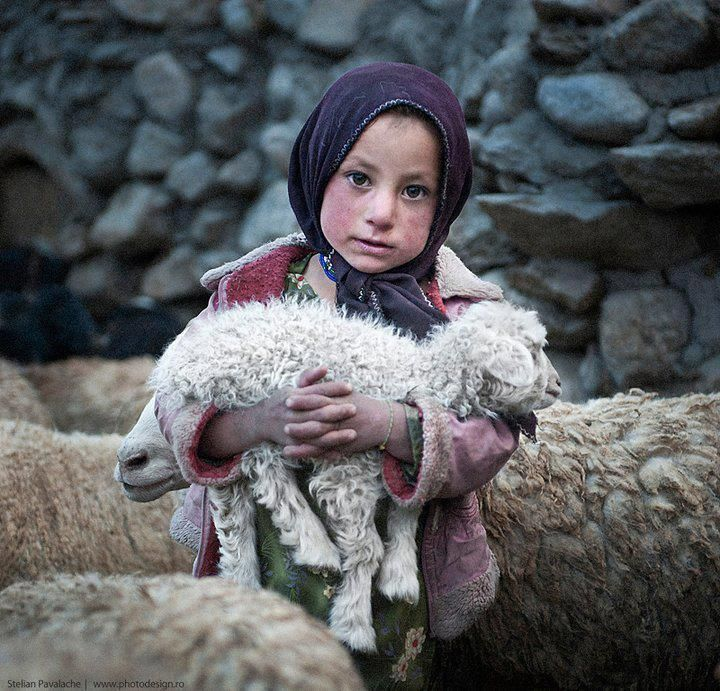 Aniqa Karim (nickname: Hakima) from Upper Shimshal, village (5200m) keeping a baby goat in her arms. Gilgit, Pakistan.  (credit: Stelian Pavalache)