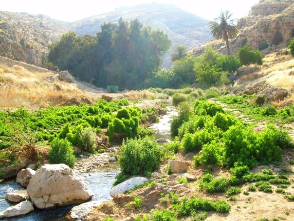 """""""Nahal Prat, a nature reserve and park in the Desert of Judea, Israel"""" (credit: Jewbask, PD)"""