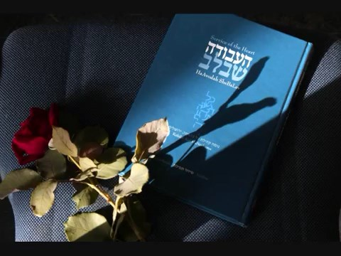 יְדִיד נֶפֶשׁ | Yedid Nefesh, translation by Rabbi Levi Weiman-Kelman & Shaul Vardi