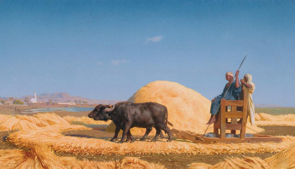 The grain threshers, Egypt (1859) by  Jean-Léon Gérôme