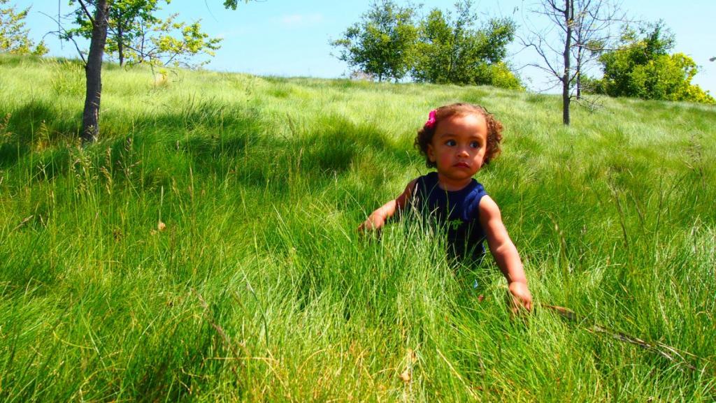 """Vivien's adventures at the park."" (credit: pxhere, license: CC0)"