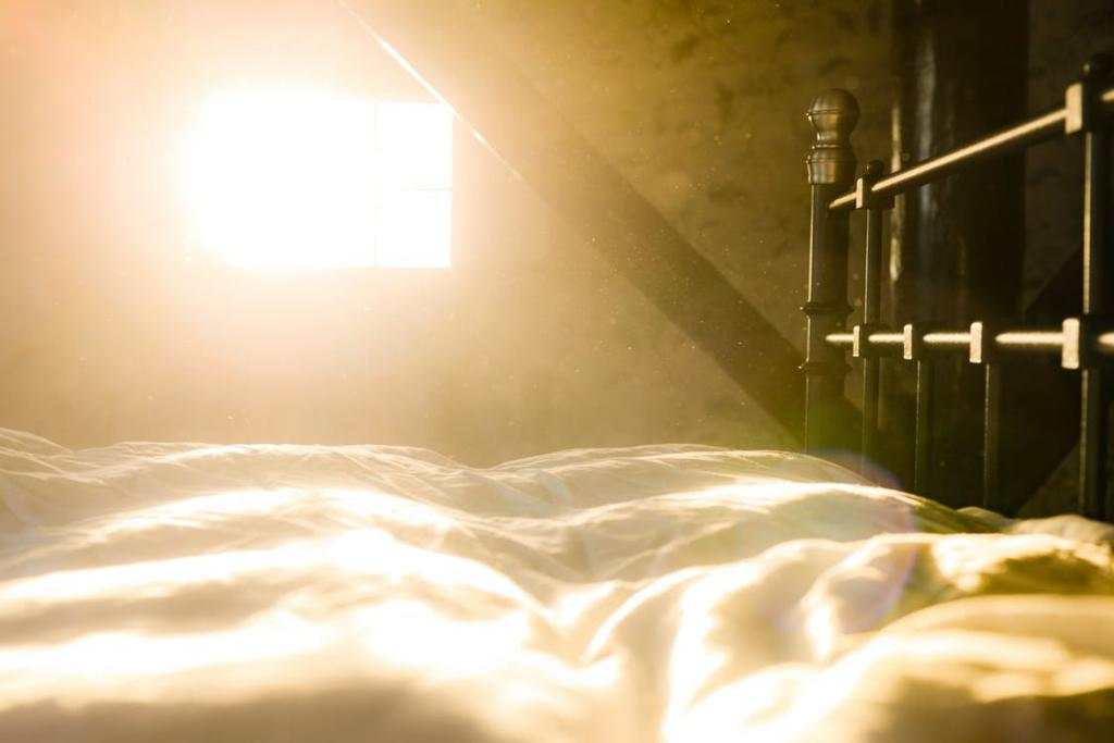"""Bed, Dust, Sun, Morning"" (credit: Skitterphoto, license: CC 0)"