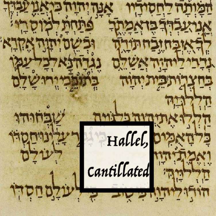 תהלים קי״ג | Psalms 113, translated and cantillated for Hallel by