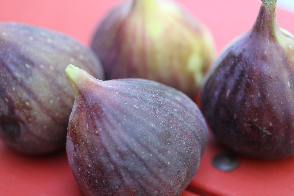 """What should I do with my fresh figs?"" (credit: Keith McDuffee, license: CC BY)"