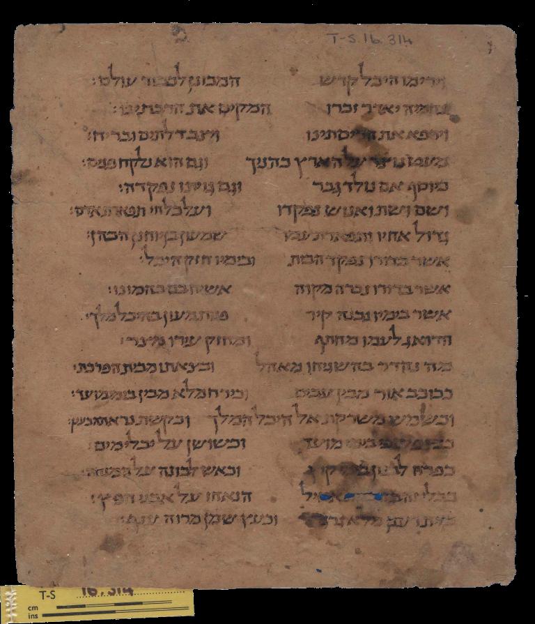 B_XIX_Verso (T-S 16 314)
