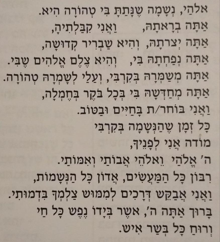 אלהי נשמה | Elohai Neshamah, adapted by Yael Schweid & Rabbi Ofer Sabath Beit-Halachmi (2009)
