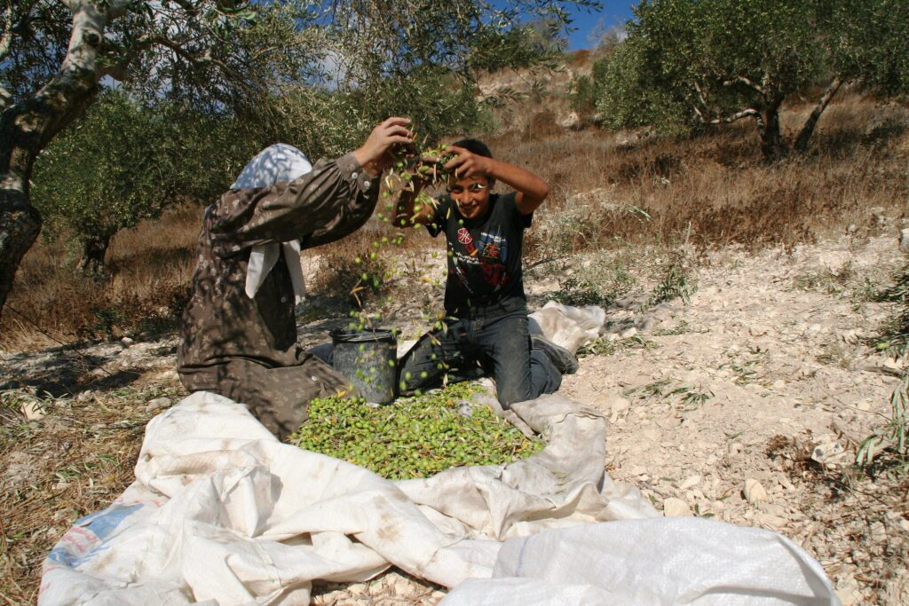 Sifting the Harvest no.2 (credit: Michael Loadenthal, license: CC BY-NC-SA)