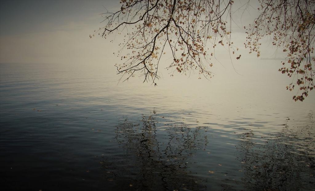 Autumn, Dawn, Lake (credit: pasaja1000)