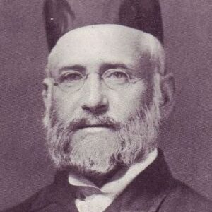 Tsvi Hirsch Robinson